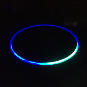 Amazon Echo Dot light ring